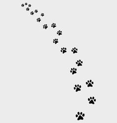Trail cat vector