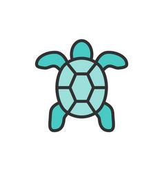 turtle aquatic animal flat color line icon vector image