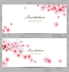 invitation cards with a blossom sakura for your vector image
