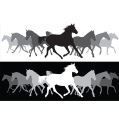 White and black Trotting horses silhouette vector image vector image