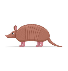 Armadillo animal standing on a white background vector