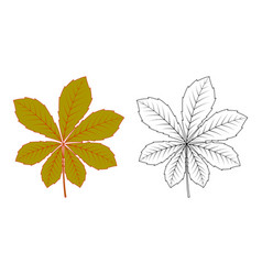 Colorful and black and white chestnut leaf vector