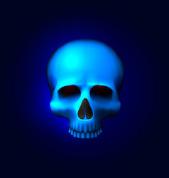 human skull isolated on black color blue object vector image