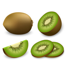 Kiwi fruit food slice icons set realistic style vector