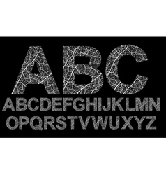 Organic style letters vector