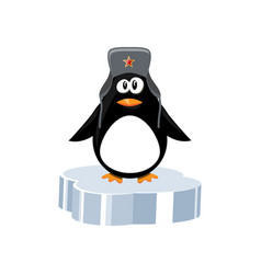 Penguin on ice floe vector