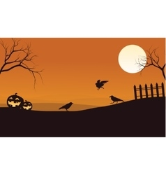 Silhouette of pumpkins and crow Halloween vector