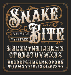 snake bite a vintage decorative typeface vector image