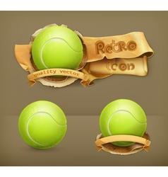 Tennis-ball icon vector image