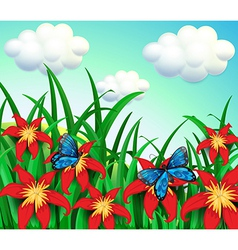 Two butterflies at the garden with red flowers vector