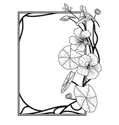 frame with nasturtium vector image vector image
