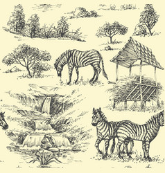 nature seamless pattern zebra and wilderness vector image