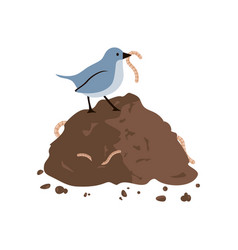 Bird eating worm vector