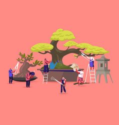 Bonsai growing concept tiny male and female vector