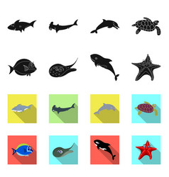 isolated object of sea and animal sign collection vector image