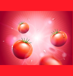 Juicy tomatoes with water drops on red radiant vector