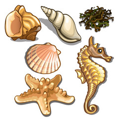 set of sea animals isolated on white background vector image