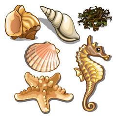 set sea animals isolated on white background vector image