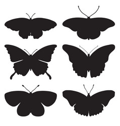 set with butterfly silhouettes isolated on white vector image