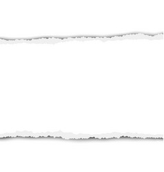 Torn snatched piece white paper vector