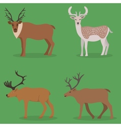 Collection of deer in a flat design vector image
