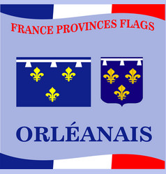 Flag of french province orleanais vector