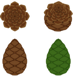 pinecone icon a branch of pine from coniferous vector image