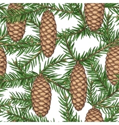 Seamless pattern with fir branches and cones vector