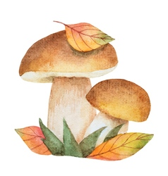 Watercolor mushrooms with autumn leaves vector
