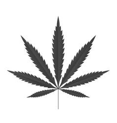 cannabis leaf icon black silhouette indica sativa vector image