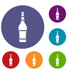 Design bottle icons set vector