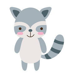Colorful cute and happy raccoon wild animal vector