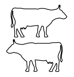 Cow icon black fill color set flat vector