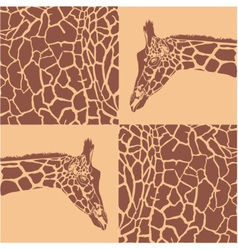 Giraffe patterns beige and brown vector image