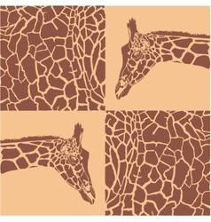 Giraffe patterns beige and brown vector