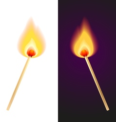 Matches vector