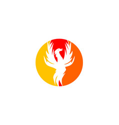 phoenix logo design template vector image
