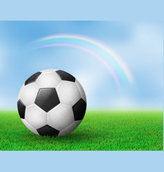 realistic soccer ball on field from side view vector image