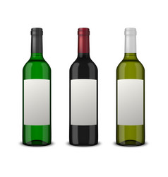 set 3 realistic wine bottles with blank vector image