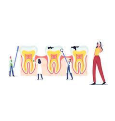 Stomatology dentistry concept tiny dentists vector