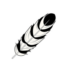 feather free spirit rustic decoration ornate vector image vector image