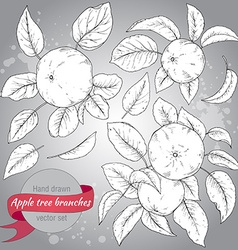 Clip art collection of hand drawn apple branches vector