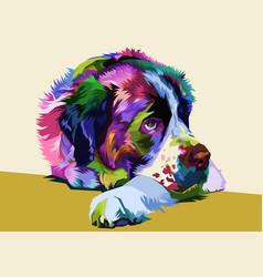 colorful saint bernard dog on pop art style vector image