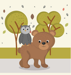 cute bear and owl animal characters vector image