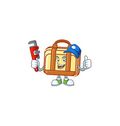 Plumber work suitcase character on white vector