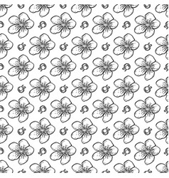 sakura seamless pattern flowers vector image
