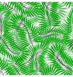 Seamless of Chamaedorea leaves vector image