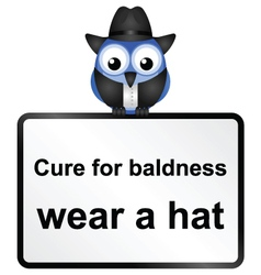 SIGN BALDNESS vector image