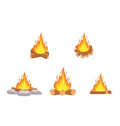 wood campfire outdoor bonfire vector image
