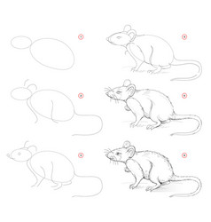 How to draw from nature sketch cute rat vector